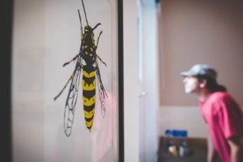 Wasp and Man